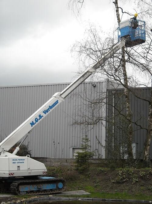 Aichi telescoophoogwerker huren voor bomen